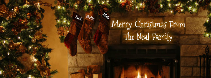 Merry Christmas From the Neals